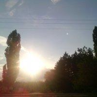 Но сказка близится к концу, и солнце движется к закату. :: Ольга Кривых
