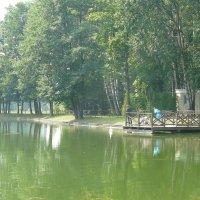 Минск, Ботанический сад. :: Надежда Акушко
