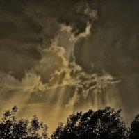Нитевидная молния :: Юрий Фёдоров