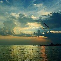 Купание на закате... :: Александр Бойко
