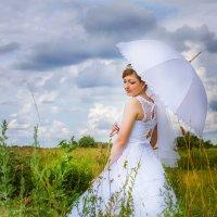 Ромашковое поле :: Евгения Вереина