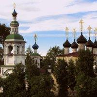 Храм Дмитрия Прилуцкого :: irina