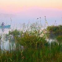 Утро на озере :: Владимир Зыбин