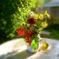 Август празднует в силу вошедшее лето.... :: Людмила Богданова (Скачко)
