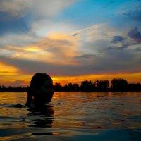 Вечернее купание :: Владимир Савельев