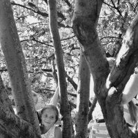 детство и дерево :: Александр