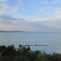Озеро Балатон :: Ольга Теткина