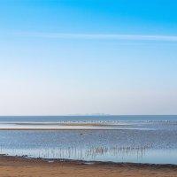 Залив в августе :: Виталий
