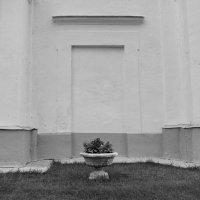 16/8 :: Юрий Бондер