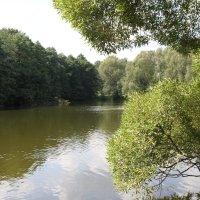 озеро :: Ксения Мельникова )