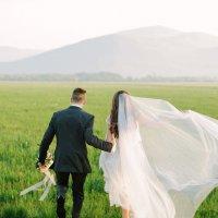 Свадьба в поле :: Александра Позникова