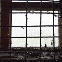 грязное окно :: Роза Бара