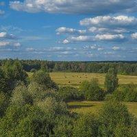 Лето,август :: Сергей Цветков
