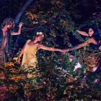 Ночь в лесу *** :: Виктор Выдрин