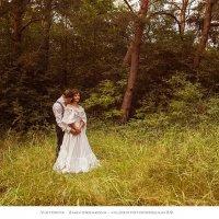 В лесной тиши :: vik zhavoronka