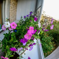 балкон :: Натали Акшинцева
