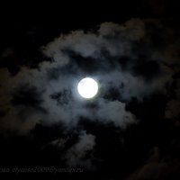 Луна красавица прячется :: Ольга Осипова