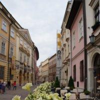 Прогулки по Кракову.... :: Алёна Савина