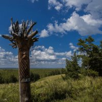 У леса на опушке :: Виктор Четошников