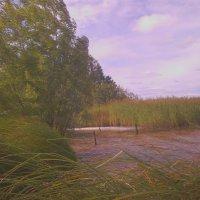 На озере. :: Елена *