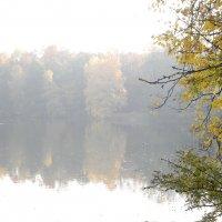 Осень :: Владимир Брагилевский