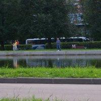 Рыбное место - два :: Владимир  Зотов