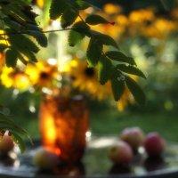Медовое утро в солнечном сиропе :: veilins veilins