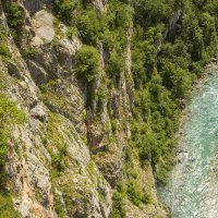 Река Тара :: Gennadiy Karasev