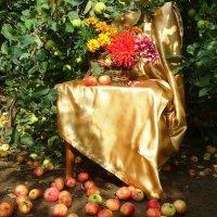 В старом яблоневом саду :: Павлова Татьяна Павлова