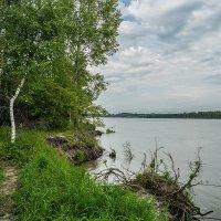 Прогулка по берегу реки :: Андрей Поляков