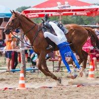 Коня на скаку остановит... :: Сергей Пучков