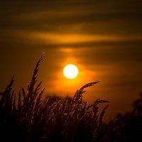 Когда можно не щурясь посмотреть на Солнце! :: Валерий Гудков