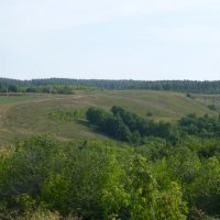 Окрестности села Красновидово :: Наиля