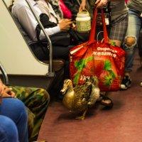 новый сбор денег  в метро на лечении уточки :: Елена Маковоз
