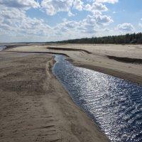 Северодвинск. Летний берег Белого моря. Сегодня речка маленькая :: Владимир Шибинский