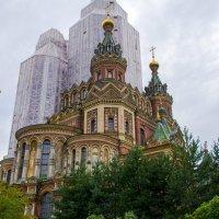 Собор Преподобных Петра и Павла в Петергофе :: Виктор М