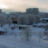 Холодное утро :: Marion