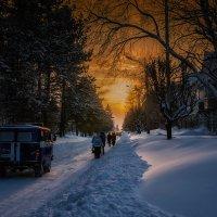 Снежная зима в городе. :: Виктор Иванович