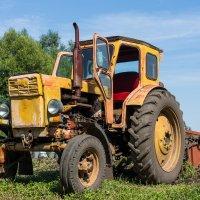 Трактор :: Alex Bush
