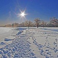 Солнце над Андреевским лугом :: Дубовцев Евгений