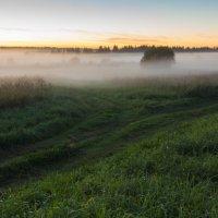 Закат в тумане :: Сергей Григорьев