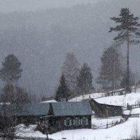 Снегопад в Глухаринке :: Екатерина Торганская