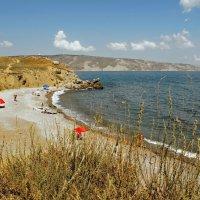 Дикий пляж. (Крым) :: владимир