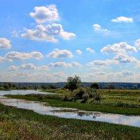 Дозревает в травах летний зной... :: Лесо-Вед (Баранов)