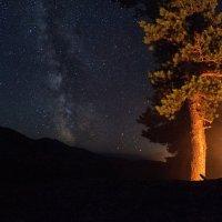 Ночь в Саянах :: Александр Решетников