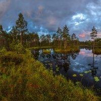 Северное лето, или пасмурный рассвет. :: Фёдор. Лашков