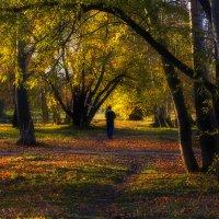 Парк, осень, человек. :: Виктор Иванович