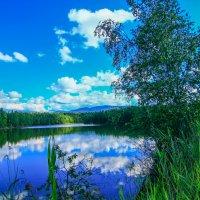 небо в озере :: Александр Перелыгин