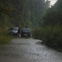 У природы нет плохой погоды... :: Альмира Юсупова