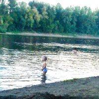 Я тоже купаться хочу :: Владимир Ростовский